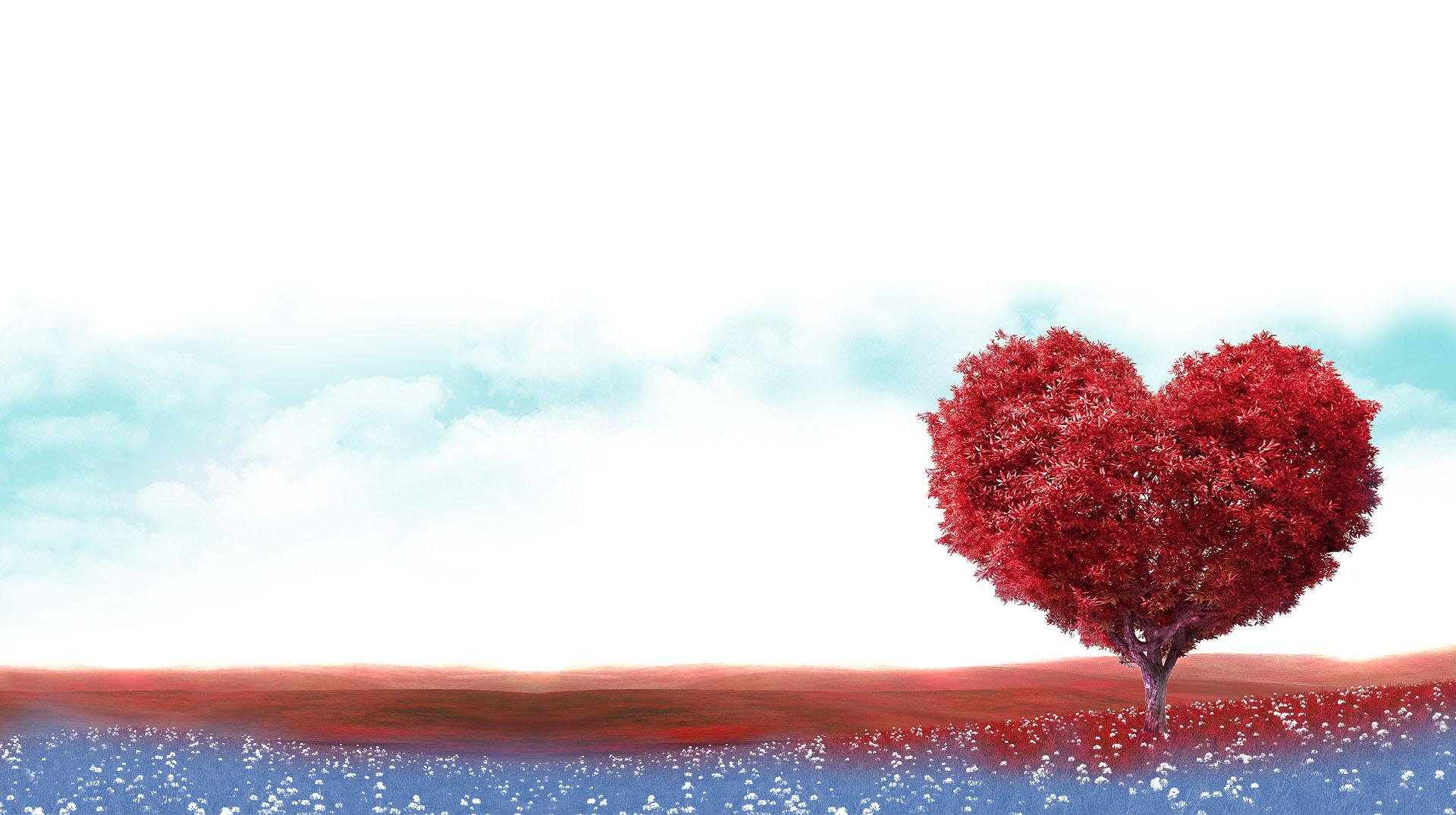 Ofrecemos salud a la vida clinica levante valencia